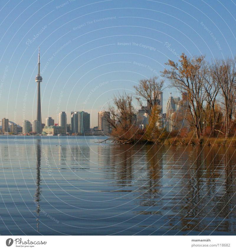 Torontos Skyline bei Tag Wasser Himmel Baum blau Haus Herbst See Vogel Wellen Küste Kanada Hochhaus Insel Idylle