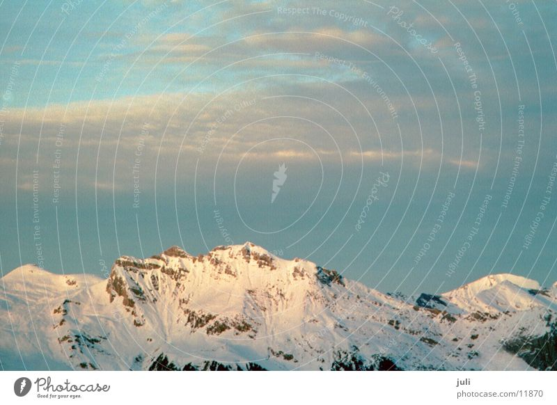 Alpen Schnee Berge u. Gebirge Felsen Berner Oberland Grindelwald