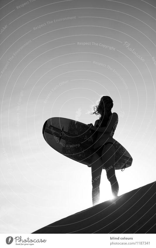 naviguer Frau Sommer Sonne Erotik Kunst Sand Zufriedenheit ästhetisch Abenteuer sportlich Düne Sommerurlaub Surfen sommerlich Surfer Surfbrett
