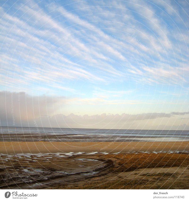 geniusstrand Meer Strand Wolken Gras grün Sonne Wattenmeer Schlick Wilhelmshaven Winter Küste Himmel Nordsee Wind blau Klarheit Sand