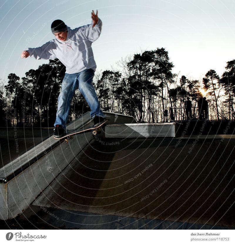 nosegrind Skateboarding Sportpark Baum Holz Beton Sonnenuntergang Stil Spielen funxbox couping Metall Schatten verrückt