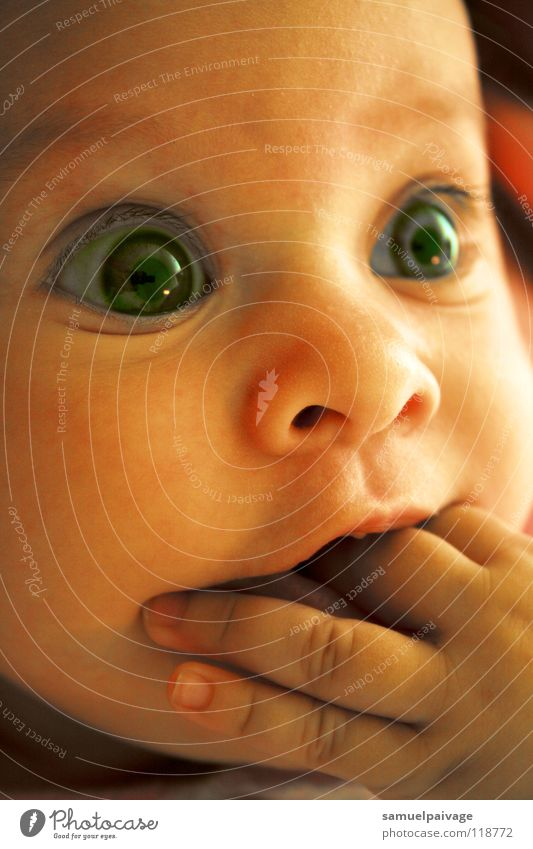 Anne Baby La Boca Guama Kleinkind children bebe garota olhos eyes azul blue hands Mao