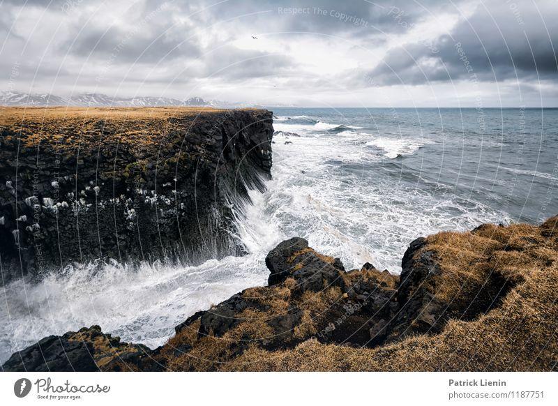 Atlantik Natur Ferien & Urlaub & Reisen grün Wasser Erholung Meer Landschaft ruhig Wolken Ferne Strand Umwelt Küste Freiheit Zufriedenheit Tourismus