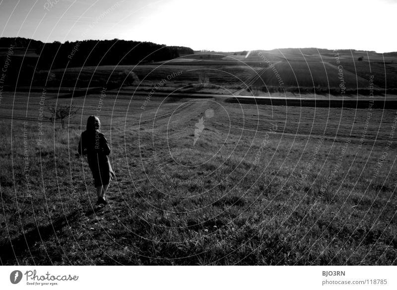 zeit zum nachdenken Weitwinkel schwarz weiß Gegenlicht Ferne Horizont Frau Denken Hügel Baum Wiese Herbst Pflanze gehen ruhig Licht Lichtfleck Schwarzweißfoto