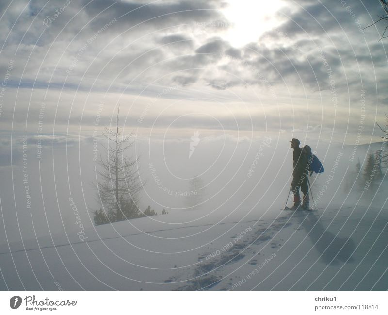 Nebelstille Mensch Mann Baum Winter ruhig Wolken Einsamkeit Schnee Berge u. Gebirge wandern Alpen Spuren Bergsteigen Wintersport Schneespur