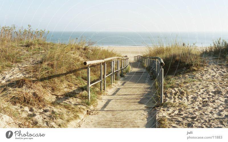 Wege muss man gehen Meer Strand Steg Heringsdorf Herbst Stranddüne