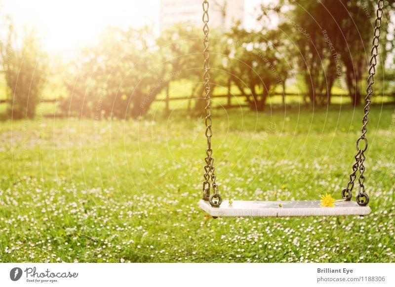 Schaukel in den Frühlingsstrahlen Lifestyle Spielen Freiheit Umwelt Natur Landschaft Pflanze Sonne Sonnenlicht Klima Wetter Schönes Wetter Blume Grünpflanze