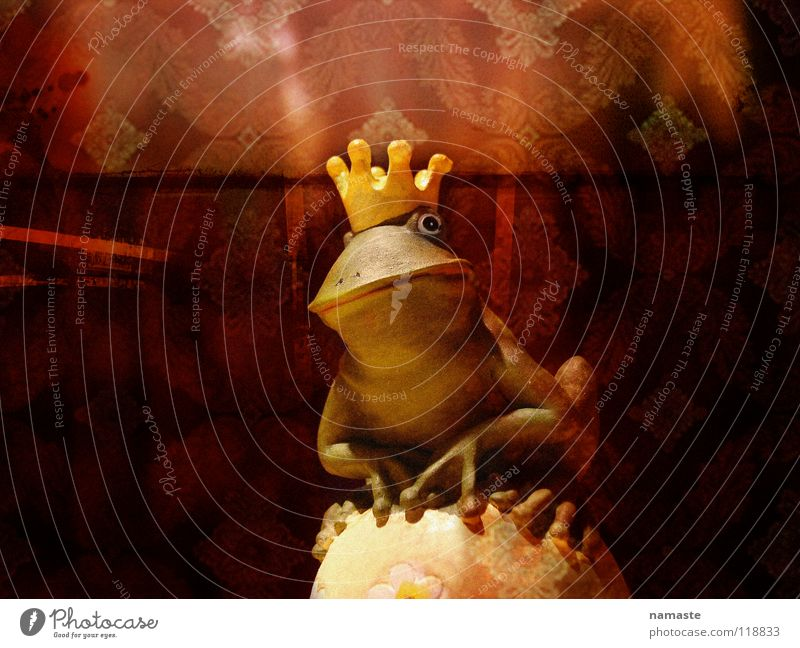 hard to be a traumprinz Tiergesicht Frosch Märchen Krone Traumprinz Froschkönig Fabelwesen Tonfigur Tierfigur