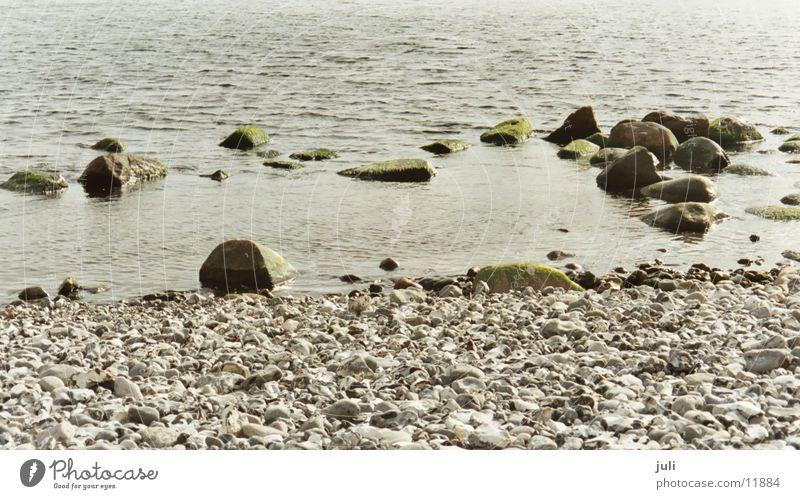 Steine Wasser Meer grün Stein Ostsee Rügen