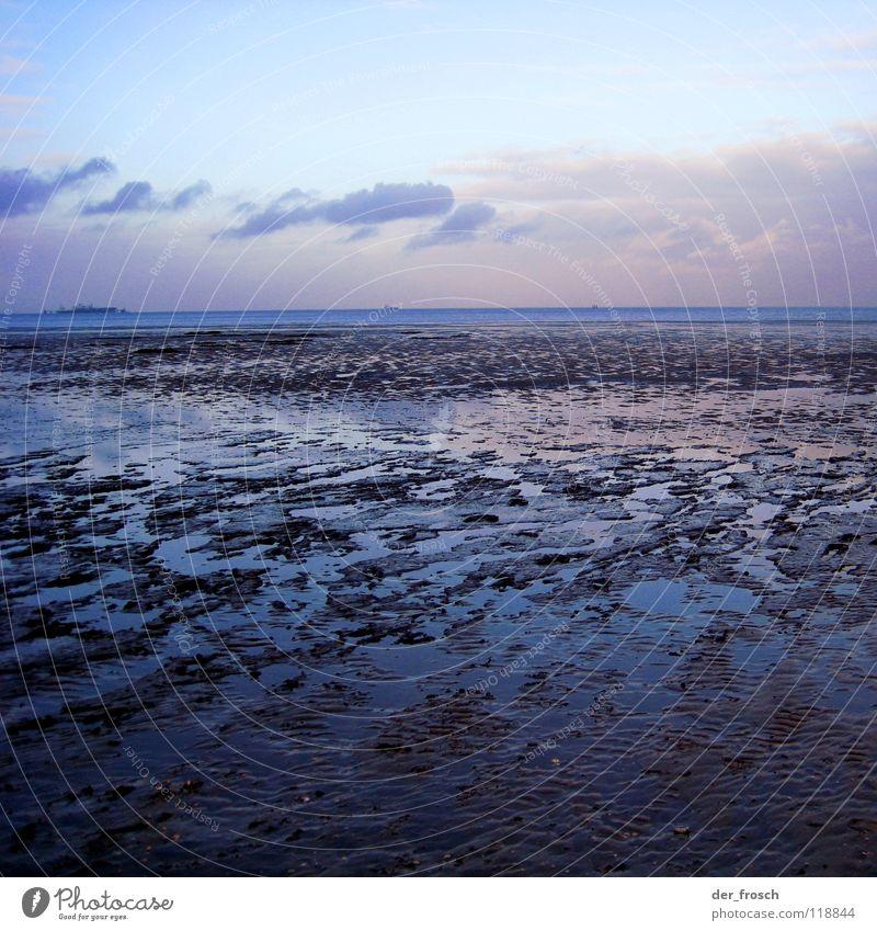 watt'n ausblick! Meer Strand Wolken Gras grün Sonne Wattenmeer Schlick Wilhelmshaven Winter Erde Sand Himmel Küste Nordsee Wind blau Klarheit geniusstrand