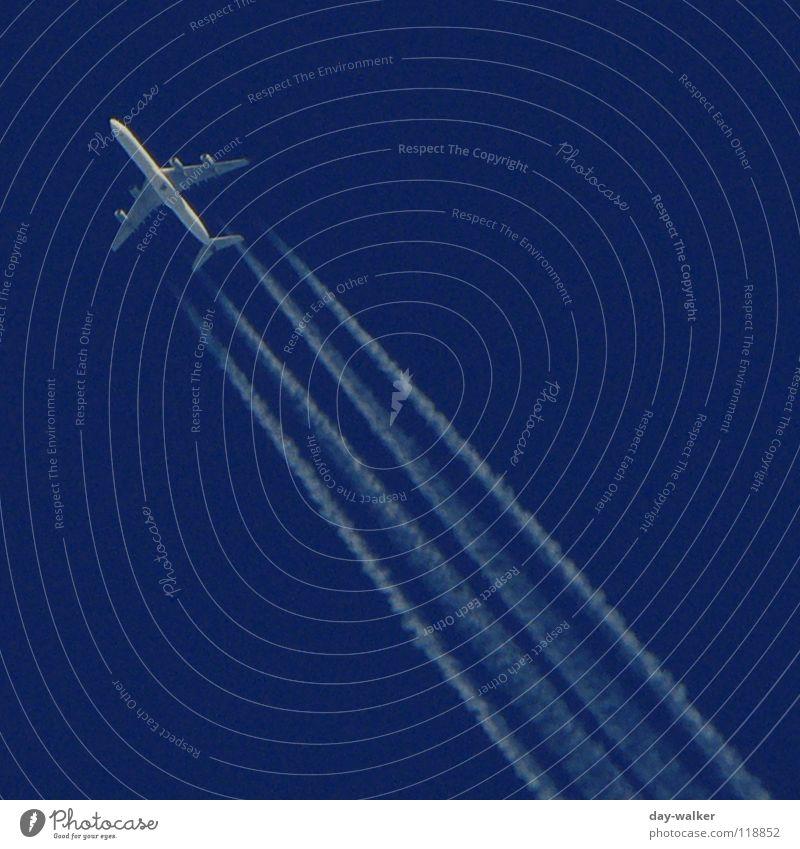 (Fernweh) Wolken machen Himmel blau weiß Ferien & Urlaub & Reisen Freiheit Luft Linie frei Flugzeug Luftverkehr Streifen Flügel Spuren diagonal Richtung Neigung