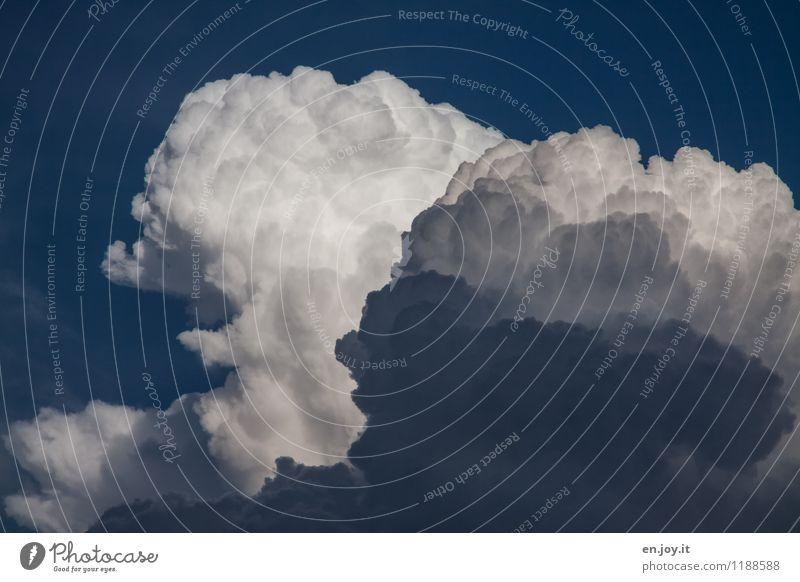 aufgebauscht Himmel Natur blau weiß Wolken dunkel Umwelt träumen Wetter Luft Angst Kraft gefährlich Klima bedrohlich Urelemente