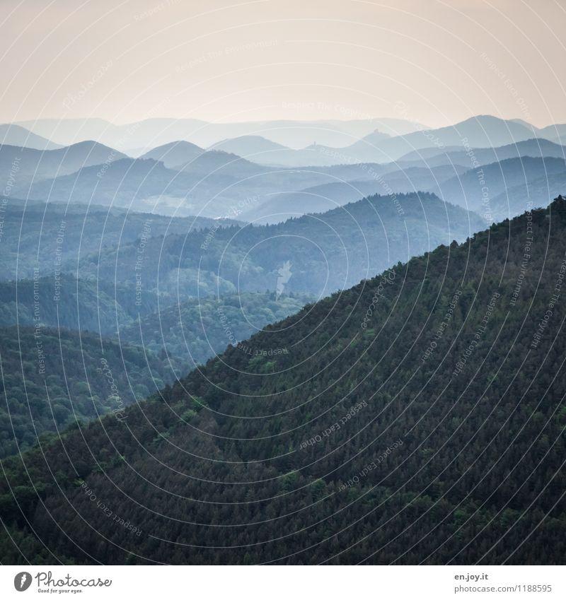 nah und fern Himmel Natur Ferien & Urlaub & Reisen Pflanze Sommer Landschaft Ferne dunkel Wald Umwelt Berge u. Gebirge Traurigkeit Wege & Pfade Freiheit Horizont Ausflug