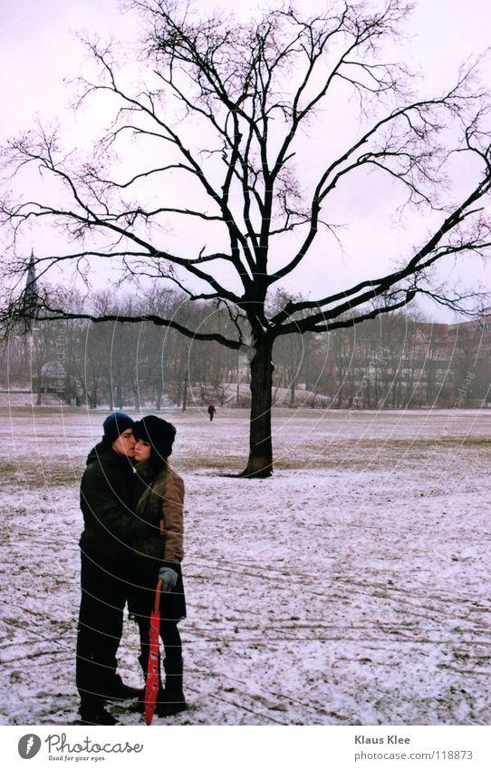 NAHDISTANZ :. Jugendliche Baum Einsamkeit Winter Ferne Liebe Park berühren Regenschirm Küssen Dresden Liebespaar Langeweile Intimität Hass Zärtlichkeiten