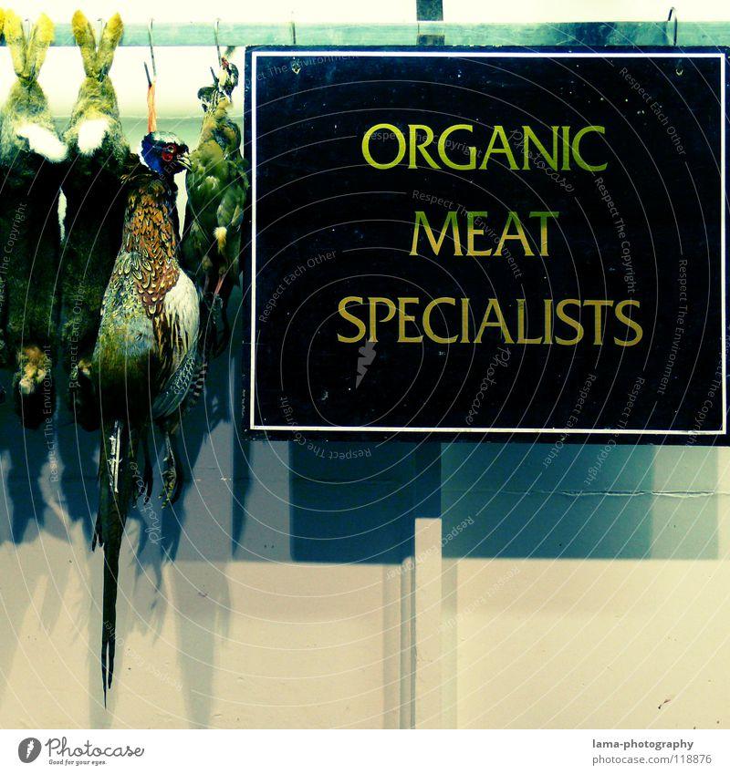 ORGANIC MEAT SPECIALISTS Plakat Metzger Metzgerei Fasan Hase & Kaninchen Schlachthof hängen Wochenmarkt Spezialitäten Fleisch Wurstwaren Schweinefilet Steak