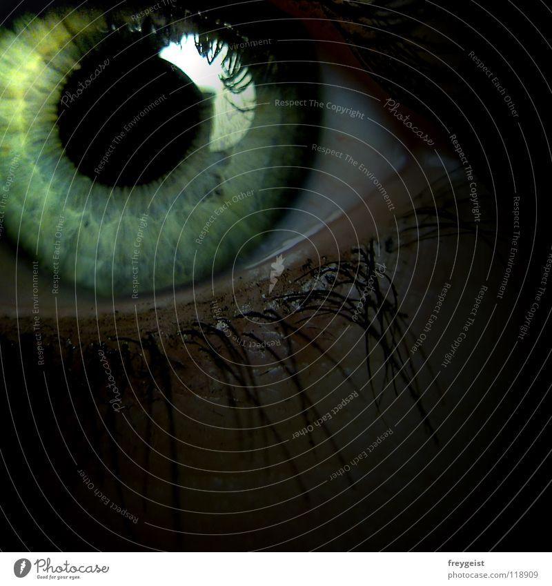 Schwarzsehen blau grün schön schwarz Auge grau Stil Regenbogenhaut