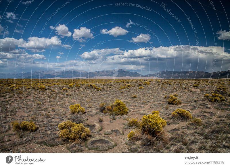 karge Schönheit Himmel Natur Ferien & Urlaub & Reisen Pflanze Sommer Landschaft Wolken Ferne Umwelt Berge u. Gebirge Freiheit Sand Regen Tourismus Sträucher Klima