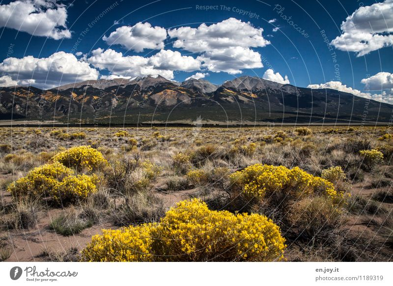 Herbstfarben Himmel Natur Ferien & Urlaub & Reisen Pflanze Sommer Einsamkeit Landschaft Wolken Ferne Umwelt Berge u. Gebirge gelb Freiheit Wachstum Tourismus
