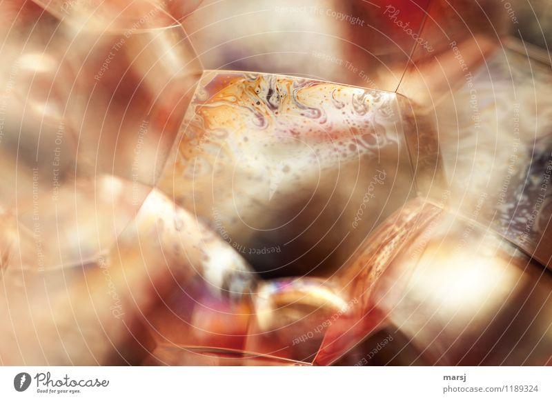 Seifenwelt harmonisch Seifenblase Seifenschaum außergewöhnlich authentisch gigantisch Unendlichkeit gruselig mehrfarbig Zusammensein Gelassenheit Interesse