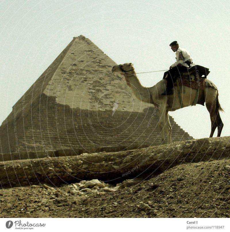 Polizei auf Kamel gelb Sand bewachen Sternbild Gizeh Langeweile Uniform Ägypten Ägypter Dreieck Pharaonen reich dunkel Symbole & Metaphern retten Kairo Peitsche