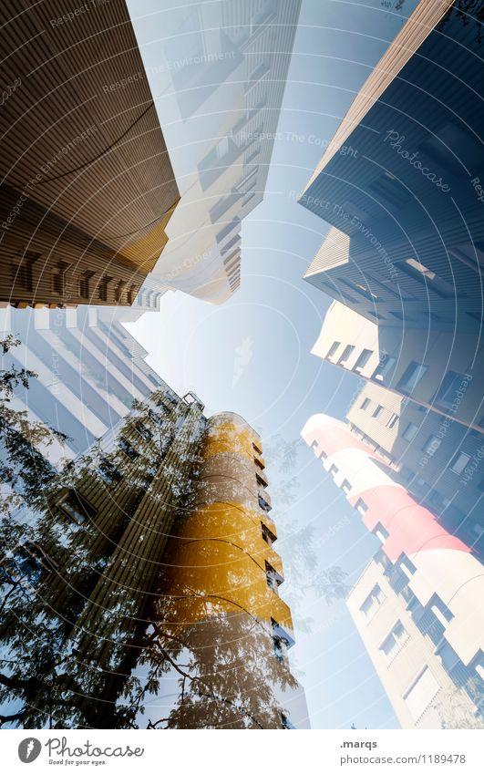 Hoch hinaus Baum Fenster Stil außergewöhnlich Fassade Design Häusliches Leben modern Hochhaus Perspektive hoch Zukunft Coolness Wolkenloser Himmel