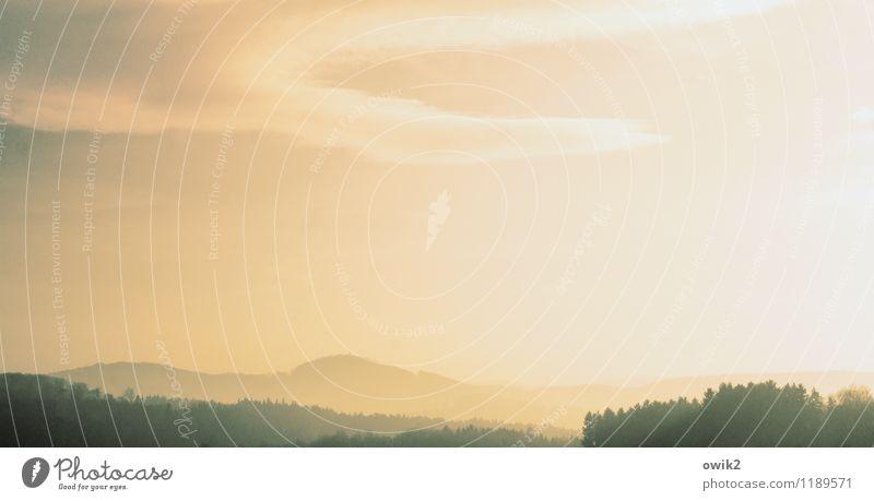 Lausitz Umwelt Natur Landschaft Himmel Wolken Horizont Wald Hügel Idylle Ferne Farbfoto Gedeckte Farben Außenaufnahme Detailaufnahme Menschenleer Sonnenlicht