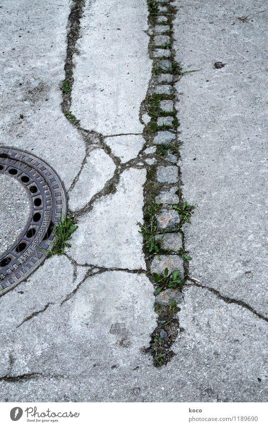 Unter den Pflastern ... Natur alt Pflanze grün Sommer schwarz Umwelt Straße Frühling Gras Wege & Pfade grau Stein braun Linie Sand
