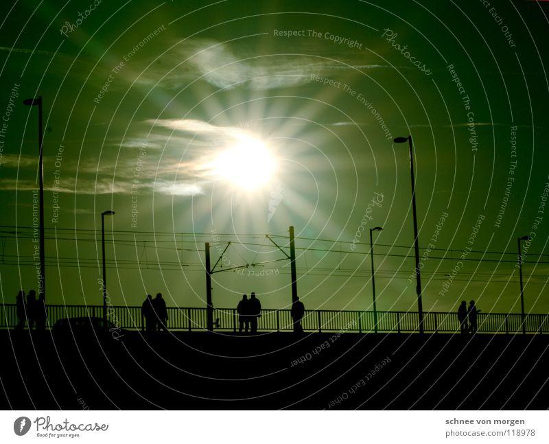 grüne nacht Mensch Sonne hell Brücke Spaziergang Rhein Sonntag