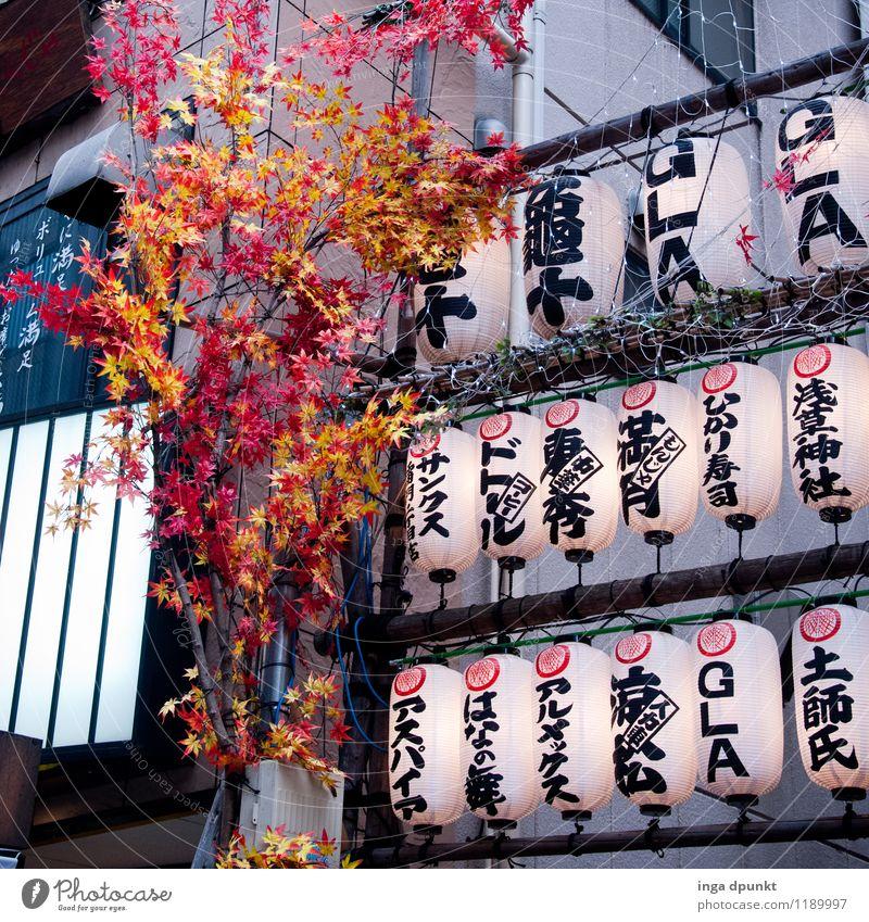 schwer zu verstehen... Kunst Umwelt Natur Pflanze Japan Tokyo Asakusa Kannon Tempel Lampe Lampion Schriftzeichen Japanisch plastikblumen modern Werbung