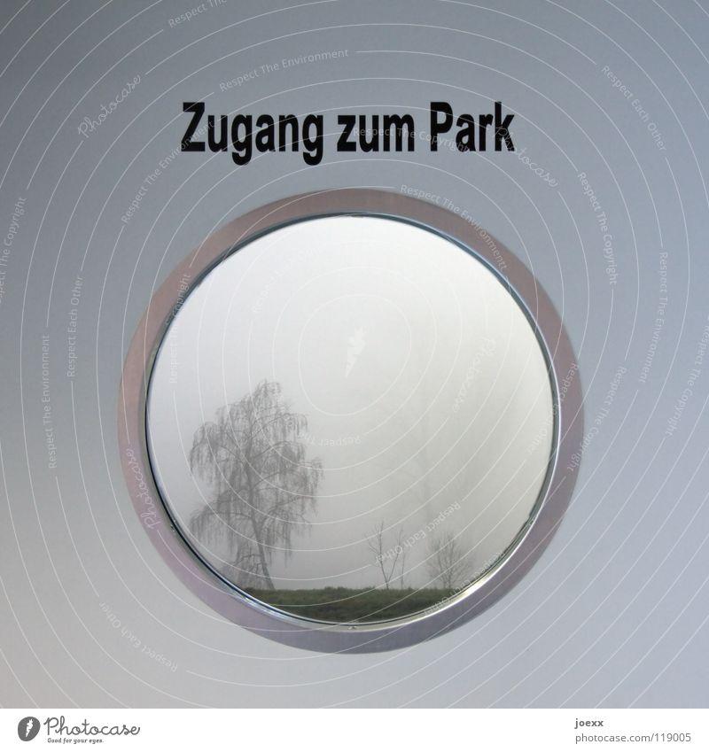 Zugang zum Park Baum Winter dunkel Herbst Garten Freiheit Park Glas Tür Nebel Hoffnung rund Aussicht Schriftzeichen Buchstaben