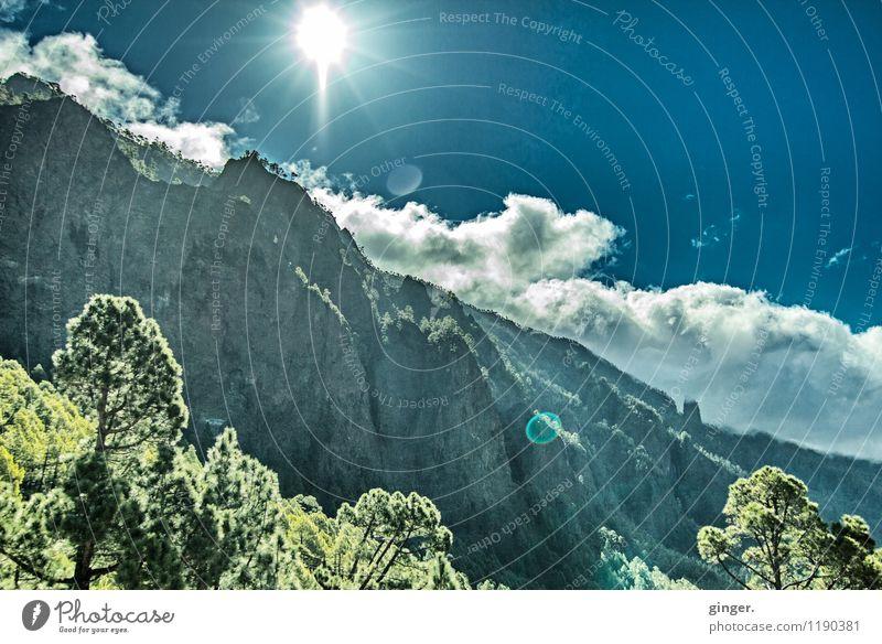 Von der Sonne geflasht Umwelt Natur Landschaft Himmel Wolken Sonnenlicht Frühling Klima Wetter Schönes Wetter Wärme Pflanze Baum Sträucher Wald Felsen