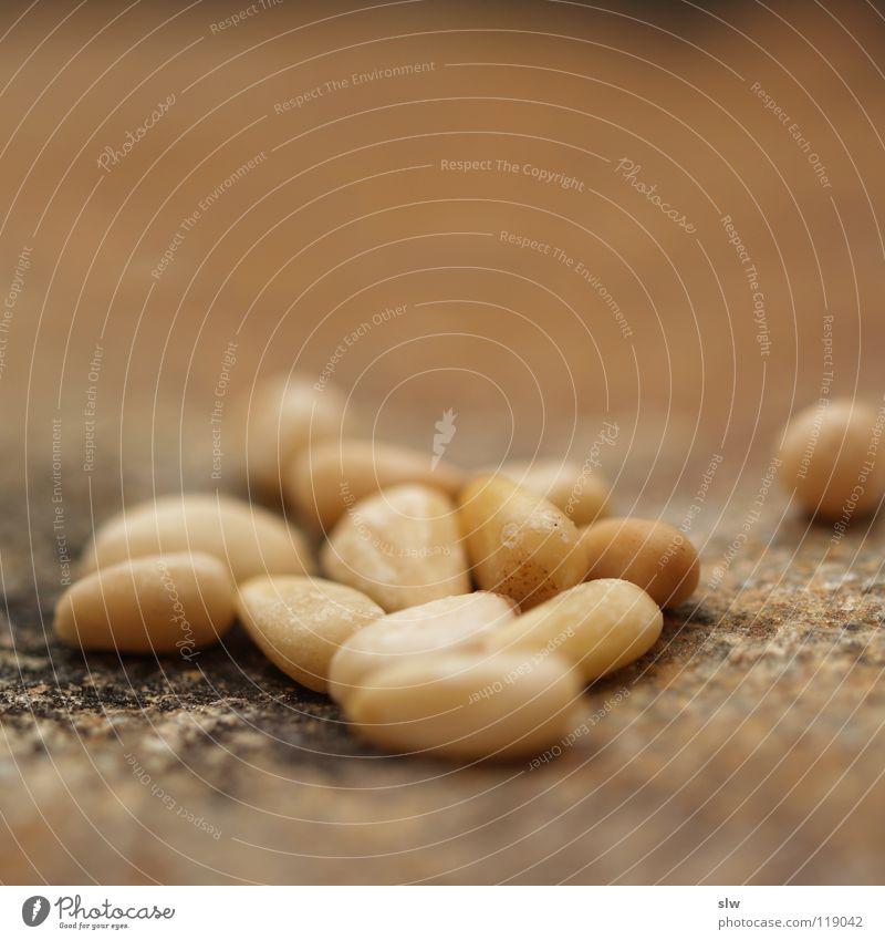 Pinienkerne Ernährung Kerne mediterran