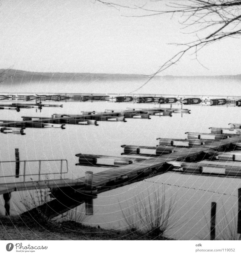 Stille See Anlegestelle Steg Holz ruhig Menschenleer Glätte Denken Blick begreifen Platz kommen wegfahren überwintern Jahreszeiten Winter Stimmung Horizont