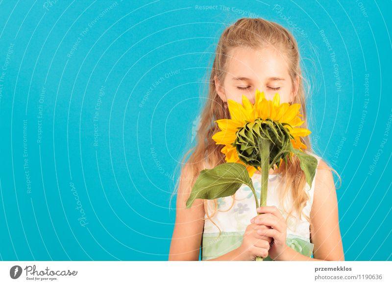 Geruch des Sommers schön Kind Mädchen 8-13 Jahre Kindheit Blüte blond klein blau heiter zugeklappt Auge horizontal eine Frühling Sonnenblume jung riechen