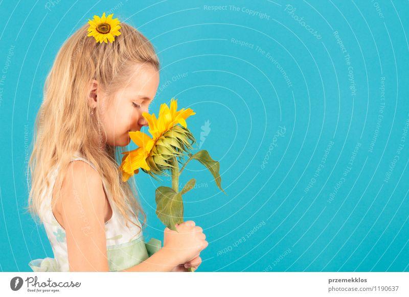 Geruch des Sommers schön Kind Mädchen 8-13 Jahre Kindheit Blüte Kleid blond klein blau gelb heiter horizontal eine Frühling Sonnenblume jung riechen Farbfoto