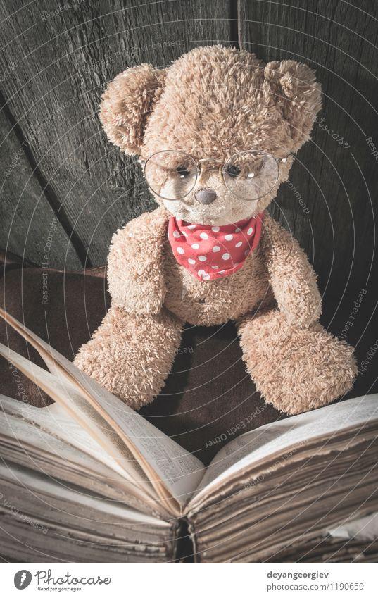 Kinder Teddybär Freude Krankheit Freizeit & Hobby lesen Mensch Mädchen Kindheit Buch Tier Spielzeug Lächeln sitzen klein niedlich weich braun weiß Bär Bildung