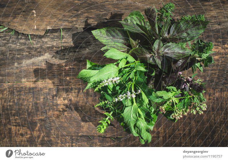 Frische Kräuter im Garten Gemüse Kräuter & Gewürze Gartenarbeit Natur Pflanze Blatt frisch natürlich grün weiß Küchenkräuter Lebensmittel Minze Hintergrund