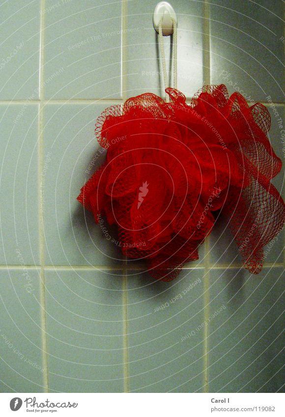 ausgewaschen alt blau Wasser rot Wand Haut Schnur Reinigen Sauberkeit Bad Wellness Netz Fliesen u. Kacheln hängen Massage Dusche (Installation)