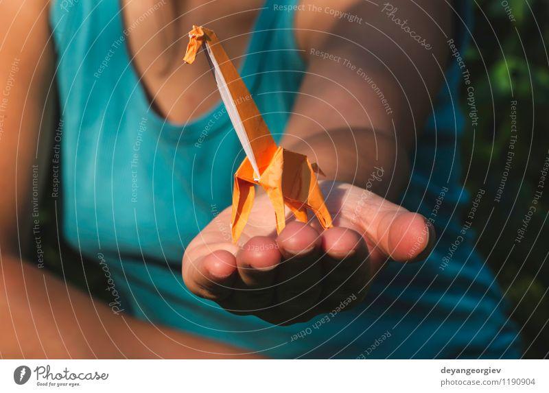 Origami orange Farbe Giraffe Design Freude Spielen Ferien & Urlaub & Reisen Tourismus Safari Dekoration & Verzierung Handwerk Kunst Zoo Natur Tier Park Papier