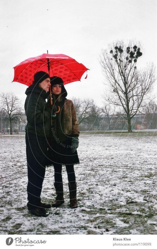 NAHDISTANZ :: Baum Winter Liebe Einsamkeit Ferne Park Hilfsbereitschaft Küssen Vertrauen Regenschirm Dresden berühren Hass Intimität Zärtlichkeiten
