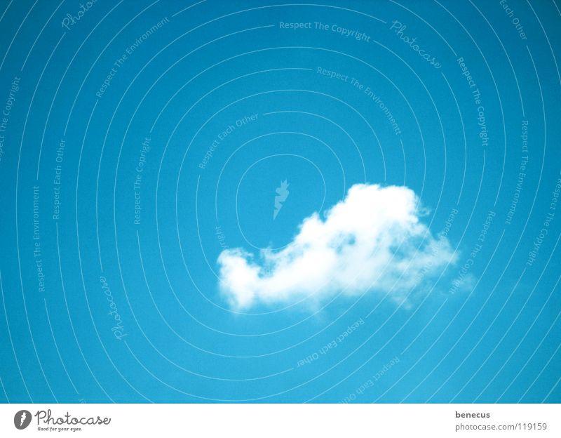 I did it my way Himmel weiß blau Sommer ruhig Wolken Einsamkeit Erholung Wege & Pfade türkis himmlisch Haufen himmelblau Watte Pionier Einsiedler