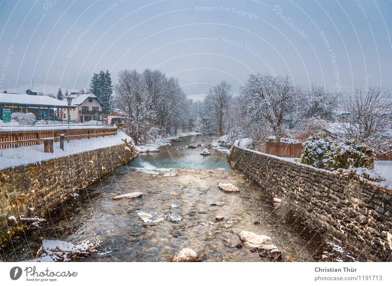 Winterfluss Ferien & Urlaub & Reisen Baum Erholung Haus Wand Schnee Sport Mauer Stein träumen Tourismus ästhetisch Ausflug beobachten Fluss