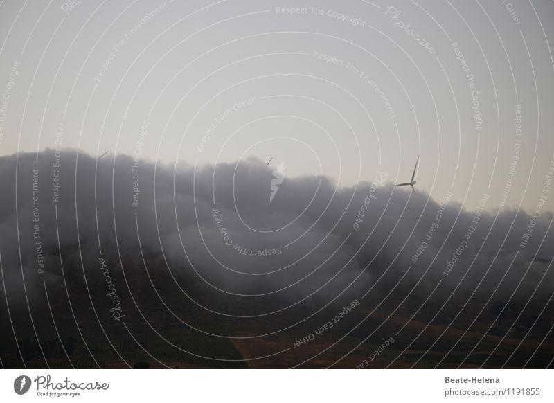 Mal ordentlich Dampf machen Natur Landschaft Luft Himmel Sommer schlechtes Wetter Nebel Berge u. Gebirge Gipfel außergewöhnlich bedrohlich dunkel blau grau
