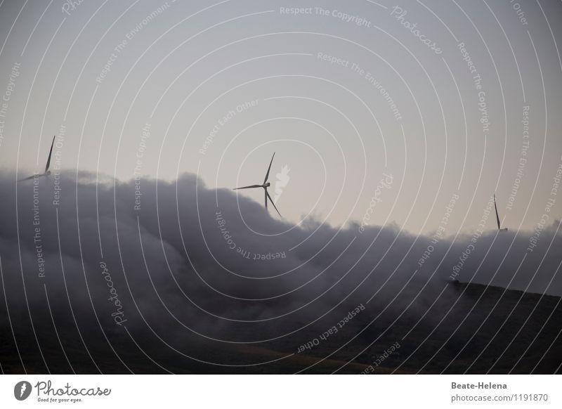 Schaumschläger gibt es überall zuhauf Ferien & Urlaub & Reisen Technik & Technologie Windkraftanlage Landschaft Himmel Wolken Sommer Nebel Feld Hügel Italien