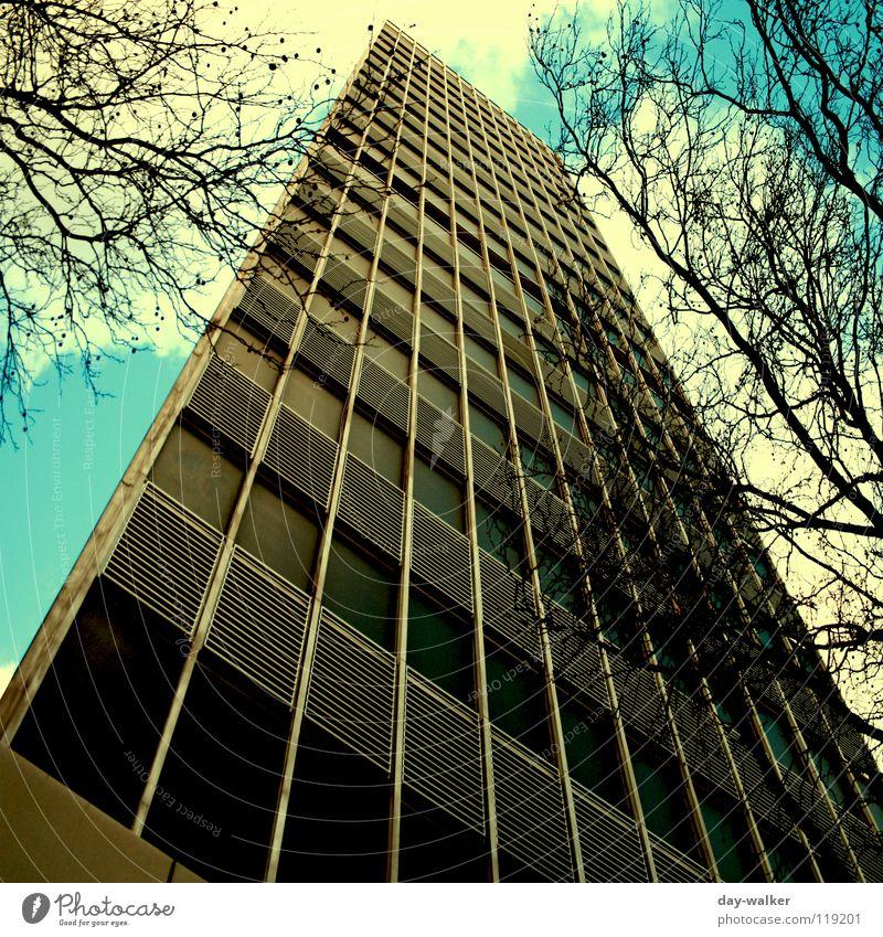 Aqua Tower Himmel Baum Wolken dunkel Fenster Business Linie hell Arbeit & Erwerbstätigkeit Fassade Hochhaus Turm Macht Ast türkis