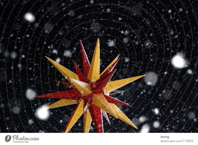 I survived Knut Stern (Symbol) Schnee Schneefall Winter Weihnachten & Advent Himmel rieseln ruhig Nacht Spitze Zacken rotgelb kalt Weihnachtsmarkt Morgenland