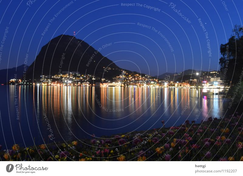 Lugano Stadt Leuchtturm Wahrzeichen Kopftuch beobachten natürlich Gefühle Identität Farbfoto Menschenleer Nacht Panorama (Aussicht) Blick in die Kamera