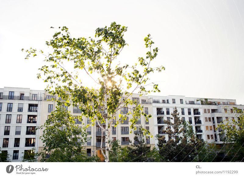 sonnenseite Himmel Natur Sommer Baum Haus Frühling Architektur Häusliches Leben Schönes Wetter