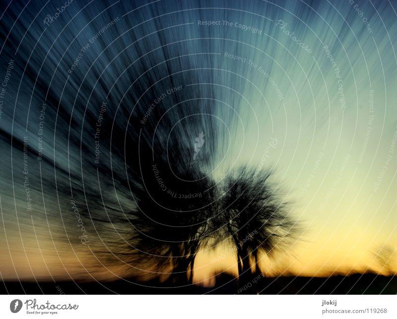 Unterwegs V fahren Autofahren Baum Sonnenuntergang spät Abend kalt Winter Jahreszeiten Himmel Wolken begrenzen Wegrand Feld verzweigt durcheinander Beton
