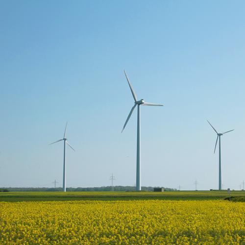 Windenergie grün Energiewirtschaft Kraft Technik & Technologie Elektrizität Windkraftanlage Umweltschutz ökologisch Sonnenenergie Solarzelle Klimawandel Windrad